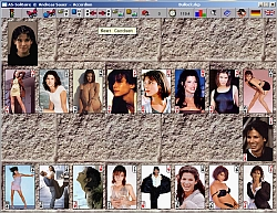 AS - Solitaire (Accordion game with Sandra Bullock cardset) - click for larger image